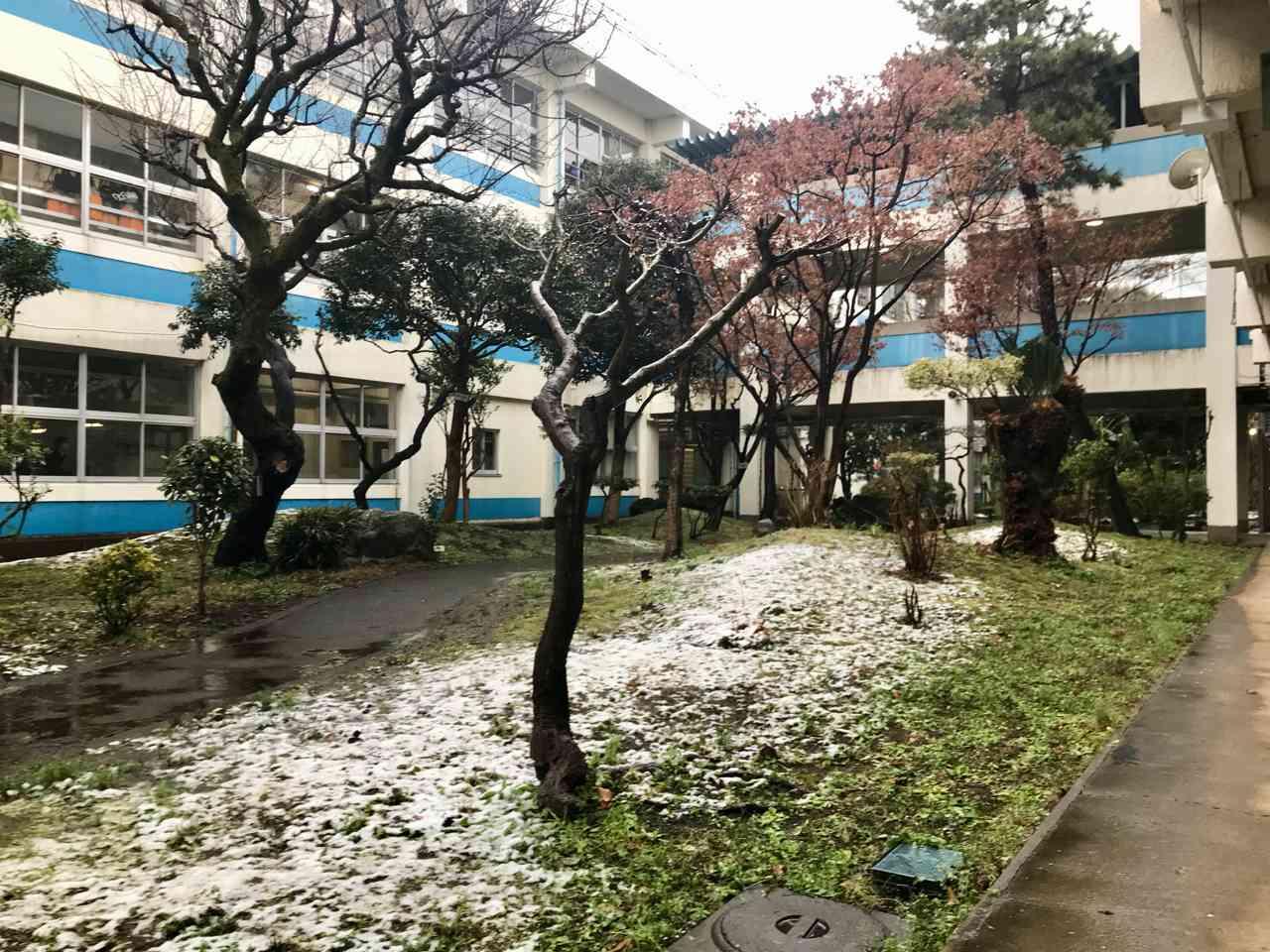 雪景色 - 1.jpg