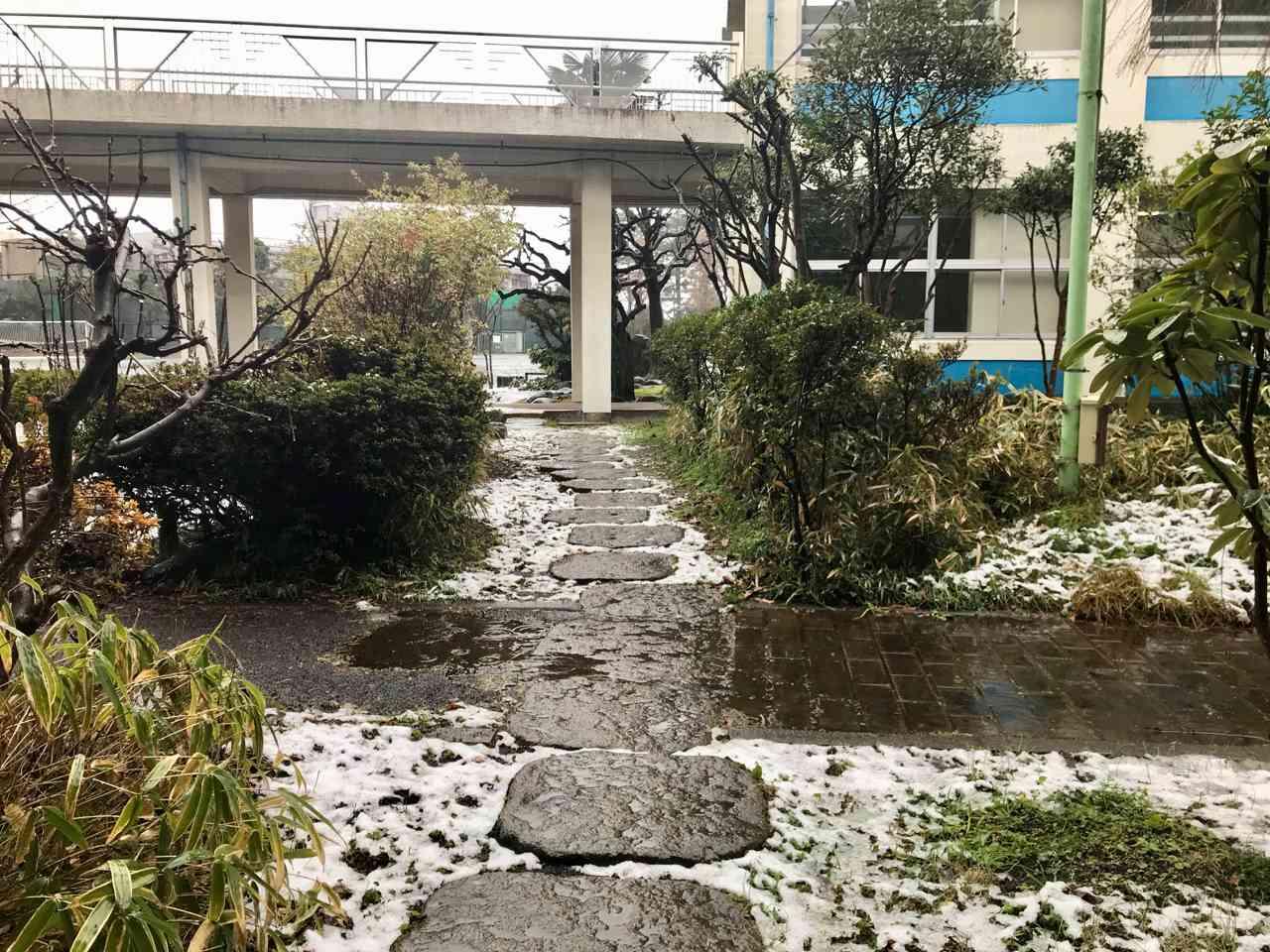 雪景色 - 2.jpg