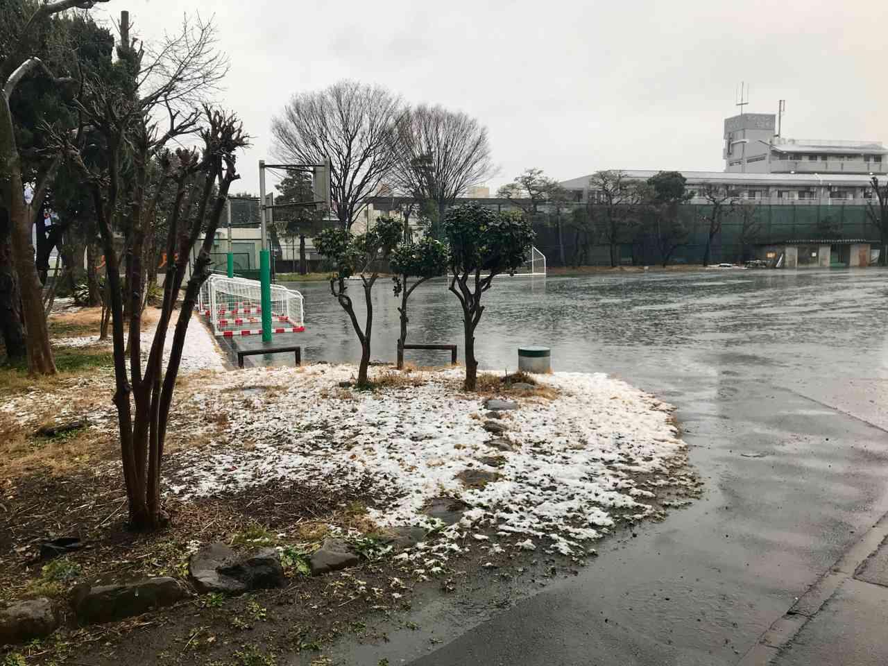 雪景色 - 3.jpg